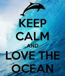 Keep Calm and love the ocean. inspirational quotes,Keep Calm And.,Keep Calm. Keep Calm Sprüche, Keep Calm Signs, Keep Calm And Love, Great Quotes, Quotes To Live By, Me Quotes, Inspirational Quotes, Motivational Sayings, Sport Quotes