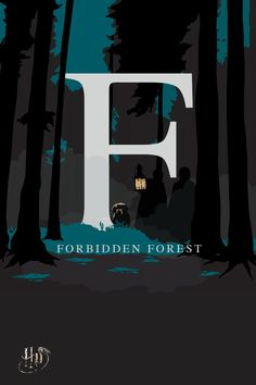 Home to all manner of mysteries and creatures, the forest is best explored with Hagrid.