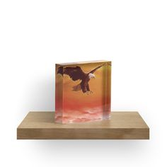 acrylic block, home accessories,decor,cool,beautiful,fancy,unique,trendy,artistic,awesome,fahionable,unusual,gifts,presents,for sale,design,ideas,eagle,orange,wildlife,bird,redbubble