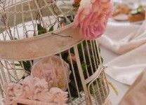 birdcage theme with pink peonies