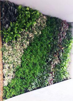 vertical garden ,landscape ,architect,wall design,nature,natural http://www.dikeybitkilendirme.com/hakkimizda