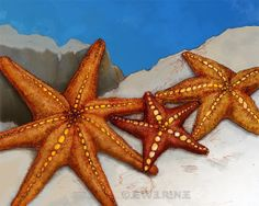 Starfish Art Print - Blue Orange Gold Sand Aquatic Art - Watercolor Inspired 8x10 Print in Jewel Renee