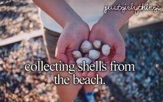 collecting shells from the beach