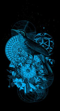 Poster design  Ilustrando by Ismael Fino