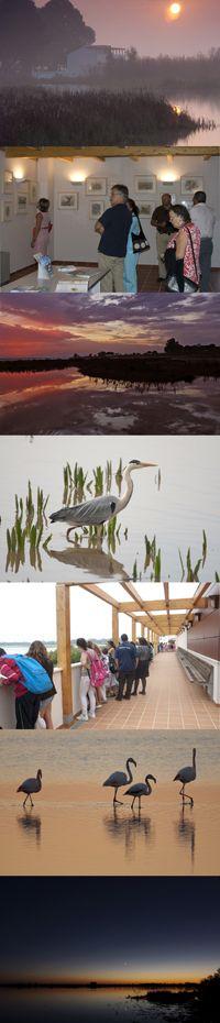 Centro Ornitológico Francisco Bernis, en El Rocío (Almonte, Parque Nacional de Doñana, Huelva) / Francisco Bernis Ornithological Center in El Rocío (Almonte, Doñana National Park, Huelva), by  @SEO_BirdLife