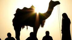 #jaisalmer