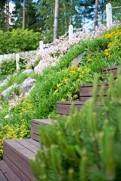 Backyard, Patio, Outdoor Gardens, Cottage, Landscape, Interior Design, Beach, Flowers, Summer