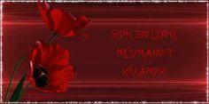 Névnapi köszöntő - Sharon-Design Neon Signs
