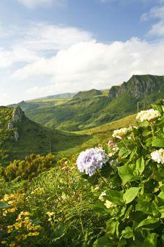 Flores, near Mosteiro, Azores, Portugal