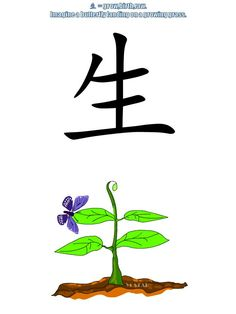 Easy Chinese Lessons for You Learn Chinese Characters, Chinese Lessons, Chinese Words, Chinese Language, Discovery, Art Work, Birth, Rain, Education