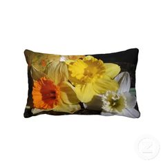 """Daffodil Threesome"" designed by Kay Novy (kkphoto1)  Check out my Zazzle website for more useful designed items....  http://www.zazzle.com/kkphoto1"