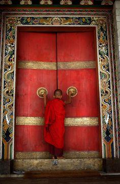 "colorel11: "" Amivitale Bhutan """
