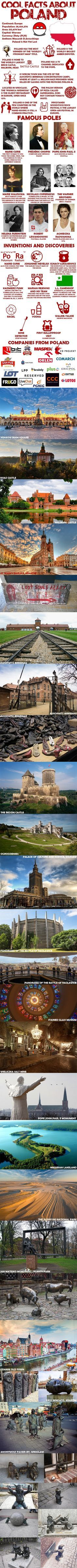 Cool facts about Poland Poland Facts, Fun Facts, Cool Stuff, Nature, Pictures, Photos, Naturaleza, Funny Facts, Nature Illustration