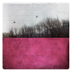 Fabienne Rivory - Interactions between Photography & Painting