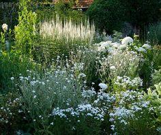 sissinghurst white garden - Google Search