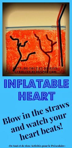 Inflatable heart craft for Valentine's Day. Blow in the straws and watch your heart beats! For craft to explore the anatomy of the heart! Human Body Activities, Health Activities, Science Activities For Kids, Preschool Science, Science Lessons, Life Science, Steam Activities, Human Body Unit, Human Body Systems