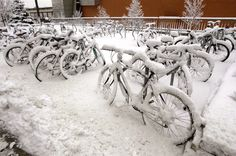 Nothing like winter biking on campus! #UMN #UMNcampus