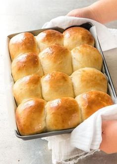 Soft no knead dinner rolls in a baking pan, fresh out of the oven.You can find Bread baking and more on our website.Soft no knead dinner rolls in a bakin. Fluffy Dinner Rolls, Homemade Dinner Rolls, Homemade Breads, Quick Dinner Rolls, No Yeast Dinner Rolls, Homemade Buns, Homemade Yeast Rolls, Recipe For Dinner Rolls, Easy Dinner Roll Recipe No Yeast