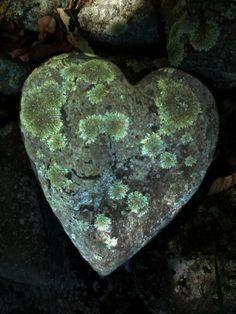 heart shaped rock.
