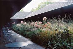 Serpentine Gallery Pavilion, by Peter Zumthor; garden design by Piet Oudolf Pavilion Architecture, Landscape Architecture, Landscape Design, Architecture Design, Chinese Architecture, Architecture Office, Futuristic Architecture, Contemporary Landscape, Sustainable Architecture