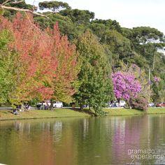 Essa semana começou quente... Foto do Lago São Bernardo em São Francisco de Paula para lembrar do outono 😍😍🌞  #gramadoexperience #thebestbeyond #omelhorealem #gramadors #serragaucha