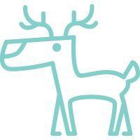 30 Christmas Party Game Ideas   Tiny Prints