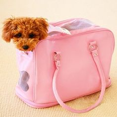 "$118.00 How's Your Dog ""Snoozer"" In-cabin (Carry on) Pet Carrier Tote for Dogs and Cats - Baby Pink, up to 16 lbs - These handcrafted pet carriers featuring every essential available for comfortable travel. Comes with exclusive How's Your Dog Swarovski Crystal Jeweled Heart Charm!!! http://www.amazon.com/dp/B002RE3HA2/?tag=pin2pet-20"