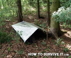A tarp makes an improvised shelter that can be broken down in a hurry. Just be sure to add a drip line.