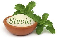 Conheça a planta stévia: um adoçante natural