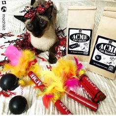 July 4th fireworks? Don't forget the cat! ACME TNT Sticks and ACME Cat Bombs. Only from StarkRavingCat. Kaboom!