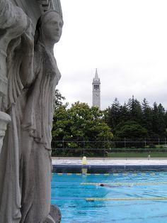 Hearst Pool, University of California-Berkeley