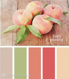 Just peachy color scheme. Rosy pink red, peachy salmon, rich cream, apple green and mocha tan. Fun palette for living room/dining room/ kitchen, or a girls bedroom! Paint Schemes, Colour Schemes, Color Combinations, Beach Color Schemes, Colour Pallette, Color Palate, Green Color Palettes, Spring Color Palette, Color Tones