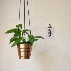 Kupferner-Pflanzenhänger #heavymetal -5Minuten-#Tutorial  jetzt auf dem #Blog (link in Bio) #hängtihnhöher #mehrnägelichrutsche  #diy #hm #home #hack #einrichtung #interieur #interior #kupfer #plants #plantcontent #copper  #livingroom #dekoration #decoration #hundm #hacking #Pflanzen #topf #upcyclingprojekt