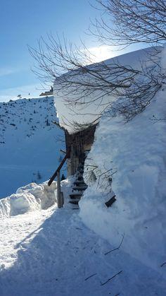 #klockerhof #familiekoch #dashotelfürentdecker #zugspitzarena #tirol #winter #schnee Winter Schnee, Outdoor, Zugspitze, Outdoors, Outdoor Games, The Great Outdoors