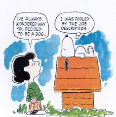 job description peanuts