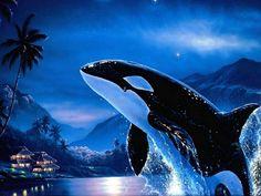 Orca whales | ORCA, killer whale, moonlight, orca