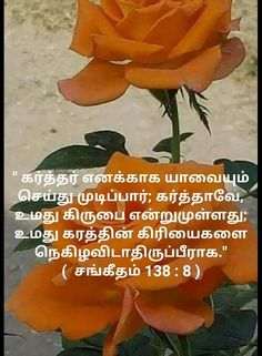 Bible Words Images, Tamil Bible Words, Word Of The Day, Word Of God, Tamil Bible Study, Bible Quotes, Bible Verses, Jesus Christ Painting, Tamil Christian
