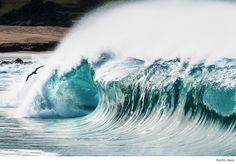 Despite its inherent dangers, shorebreak makes for an incredible photograph.
