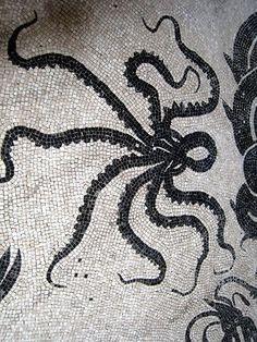 Vintage Octopus N 16 Sea Life Print Marine Sea Life