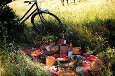 picnics and bicycles