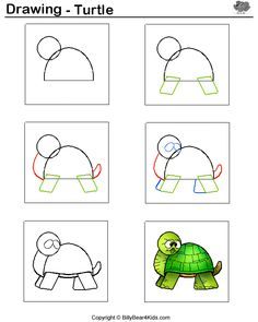 Step by step guide to drawing a turtle.
