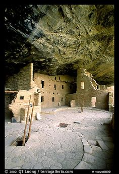 Ladder emerging from Kiva and Spruce Tree house. Mesa Verde National Park, Colorado, USA.