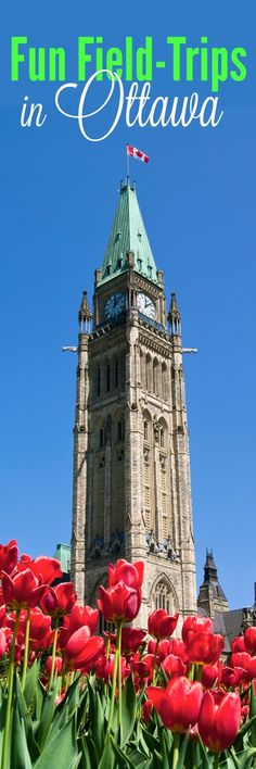 Ottawa is a fabulous place to have fun - with so many museums and cultural events. Take a look at some of our favorite Ottawa field trips for homeschoolers.
