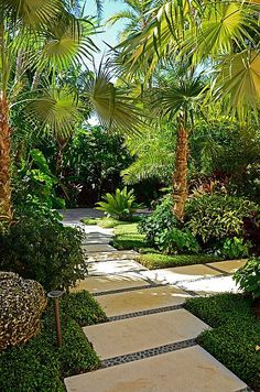 Tropical Landscape/Yard - Found on Zillow Digs. What do you think?