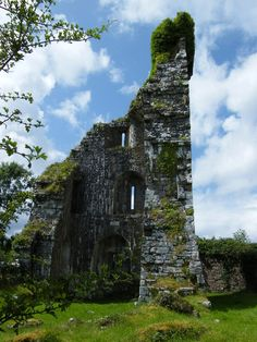 """""""Aghalard Castle is a ruined tower castle south of Castlebar, County Mayo, Ireland. Built in c.1490 by the descendants of the McDonnells of Knocknacloy who had become Gallóglaigh to the Burkes of Mayo. The castle was captured in 1596 by Edward Brabazon, 1st Baron Ardee, Ulick Burke, 3rd Earl of Clanricarde and James Riabhach Darcy, however it was evacuated shortly afterwards upon hearing of the approach of Hugh Roe Ó Donnell.""""  https://en.wikipedia.org/wiki/Aghalard_Castle"""
