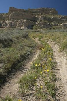 Take this road and it will get you close to Courthouse Rock and Jail Rock.  You can hike and even climb until it becomes too steep.  Located near Bridgeport, Nebraska.