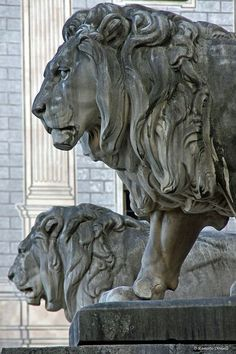 Stone lions next to the staircase of Feldherrnhalle in Munich