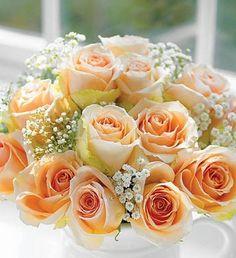 http://flowerstodeliver.net/images/flowers/Roses-Peach.jpg
