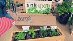 Mi GastroJardín. Haz tu propio huerto urbano de plantas aromáticas. www.gastrojardin.com