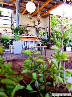 Eco Urban Cafe The Living Room